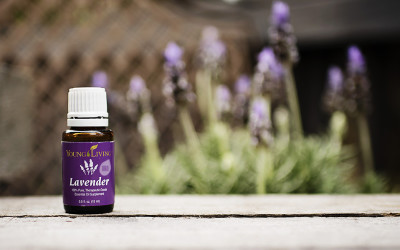 5 Ways to Use Lavender Essential Oil